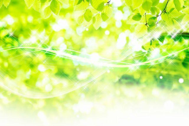 癒し(緑)